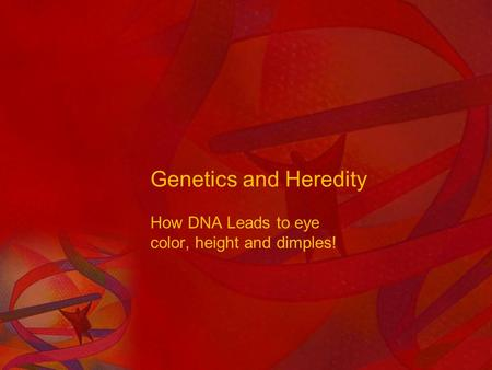 Genetics and Heredity How DNA Leads to eye color, height and dimples!