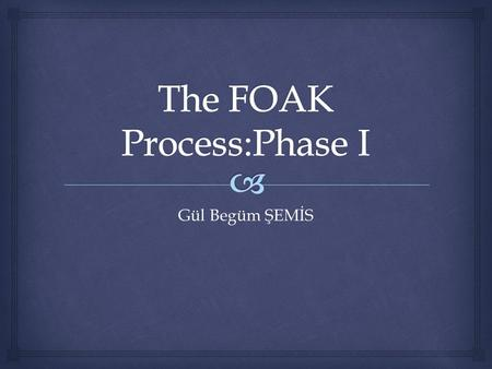 Gül Begüm ŞEMİS. Milestones Appointments Due dates Check lists Approval 01.03.2012The FOAK Process Phase I2 Project Process.
