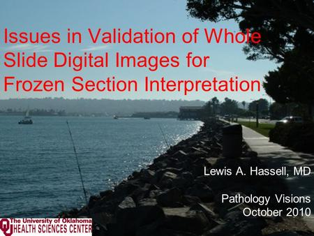 Issues in Validation of Whole Slide Digital Images for Frozen Section Interpretation Lewis A. Hassell, MD Pathology Visions October 2010.