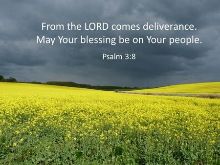 From the LORD comes deliverance. May Your blessing be on Your people. Psalm 3:8.