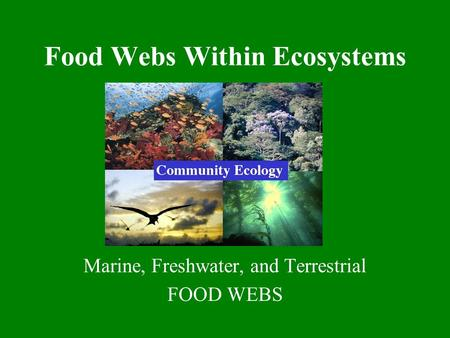 Food Webs Within Ecosystems Marine, Freshwater, and Terrestrial FOOD WEBS.