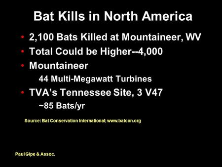 Bat Kills in North America 2,100 Bats Killed at Mountaineer, WV Total Could be Higher--4,000 Mountaineer 44 Multi-Megawatt Turbines TVA's Tennessee Site,