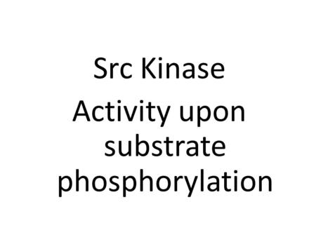 Src Kinase Activity upon substrate phosphorylation.