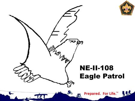 NE-II-108 Eagle Patrol. Self Assessment Upon completion of this presentation you will: Understand the importance of self-assessment in maximizing your.
