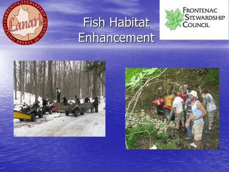 Fish Habitat Enhancement. Fish Habitat Enhancement: Bass Provide near shore cover for young bass Provide near shore cover for young bass –Fell trees into.