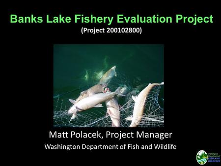 Banks Lake Fishery Evaluation Project (Project 200102800) Matt Polacek, Project Manager Washington Department of Fish and Wildlife.