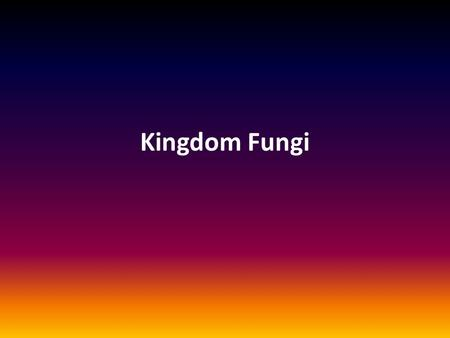 Kingdom Fungi. Traits – Eukaryotic – Spore-bearing – Heterotrophic (obtain organic compounds through absorption) – Sexual/asexual reproduction – No chlorophyll.