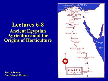 Source: Durant, Our Oriental Heritage. Lectures 6-8 Ancient Egyptian Agriculture and the Origins of Horticulture.