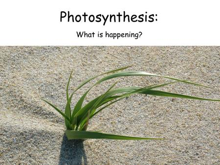 Photosynthesis: What is happening?. Have you ever heard water being called by a different name?