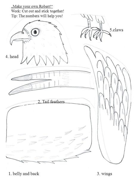 "4. head 1. belly and back 5.claws 2. Tail feathers 3. wings ""Make your own Robert!"" Work: Cut out and stick together! Tip: The numbers will help you!"