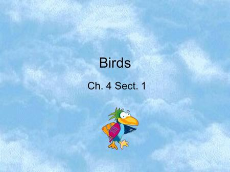 Birds Ch. 4 Sect. 1 This symbol means don't write the text directly next to it unless you feel it will help you to better understand the concept. All.
