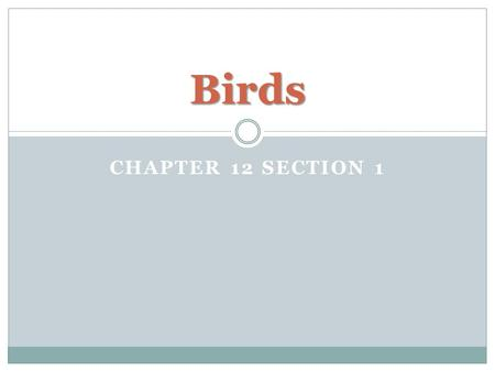CHAPTER 12 SECTION 1 Birds. Characteristics of Birds Endotherm Vertebrate that has feathers Four-chambered heart Lays eggs Most can fly Scales on feet.