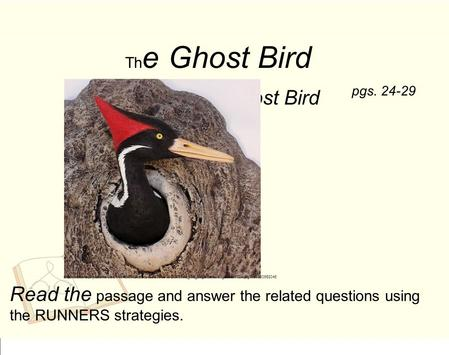 Th e Ghost Bird S aving the Ghost Bird Read the passage and answer the related questions using the RUNNERS strategies. pgs. 24-29