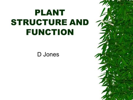 PLANT STRUCTURE AND FUNCTION D Jones. Plant Cell Types  parenchyma –metabolism –storage –contain plastids that store store starch –support with growth.