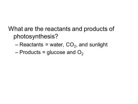 What are the reactants and products of photosynthesis? –Reactants = water, CO 2, and sunlight –Products = glucose and O 2.