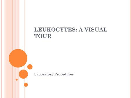 LEUKOCYTES: A VISUAL TOUR Laboratory Procedures. THERE ARE 5 WHITE BLOOD CELLS Segmented Neutrophil Lymphocyte Monocyte Eosinophil Basophil.