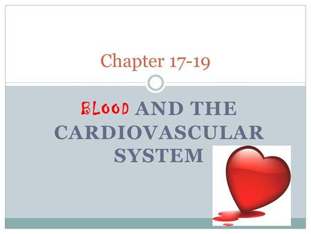 BLOOD AND THE CARDIOVASCULAR SYSTEM Chapter 17-19.
