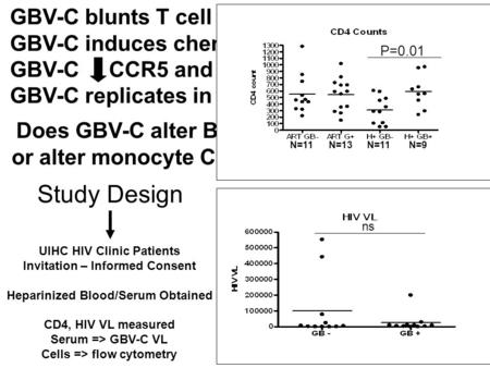 Study Design UIHC HIV Clinic Patients Invitation – Informed Consent Heparinized Blood/Serum Obtained CD4, HIV VL measured Serum => GBV-C VL Cells => flow.