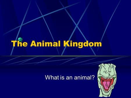The Animal Kingdom What is an animal? Basic Animal Characteristics 1) Multicellular 2) Heterotrophic 3) Eukaryotic/No Cell Walls.