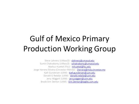 Gulf of Mexico Primary Production Working Group Steve Lohrenz (UMassD) - Sumit Chakraborty (UMassD) -
