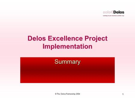 1 © The Delos Partnership 2004 Delos Excellence Project Implementation Summary.