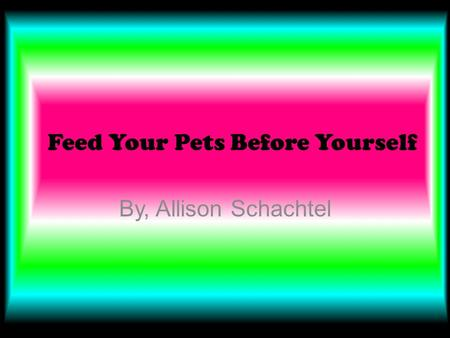 Feed Your Pets Before Yourself By, Allison Schachtel.