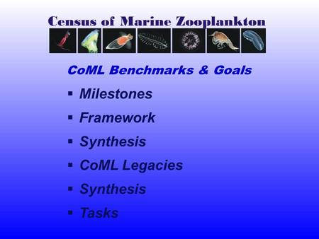  Milestones  Framework  Synthesis  CoML Legacies  Synthesis  Tasks CoML Benchmarks & Goals.
