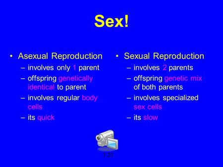 Sex! Asexual Reproduction –involves only 1 parent –offspring genetically identical to parent –involves regular body cells –its quick Sexual Reproduction.