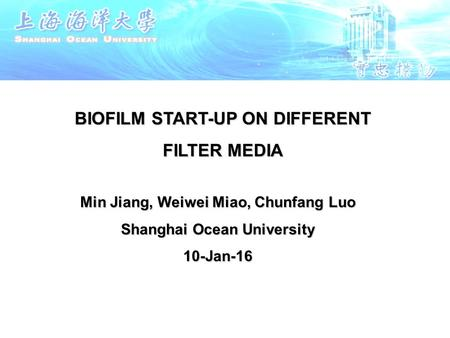 BIOFILM START-UP ON DIFFERENT FILTER MEDIA Min Jiang, Weiwei Miao, Chunfang Luo Shanghai Ocean University 10-Jan-16.