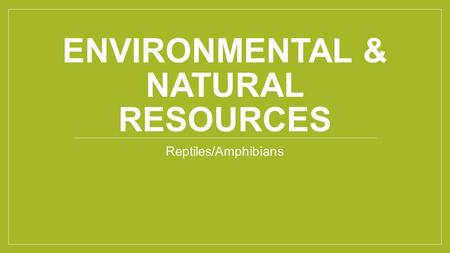 ENVIRONMENTAL & NATURAL RESOURCES Reptiles/Amphibians.