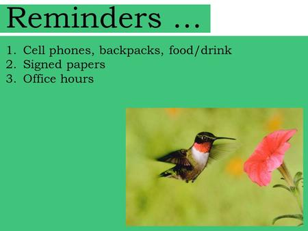 Reminders … 1.Cell phones, backpacks, food/drink 2.Signed papers 3.Office hours.