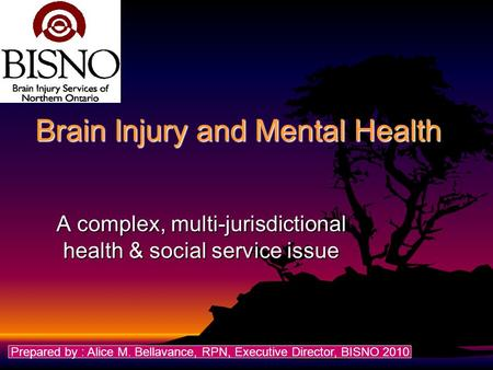 Brain Injury and Mental Health A complex, multi-jurisdictional health & social service issue Prepared by : Alice M. Bellavance, RPN, Executive Director,