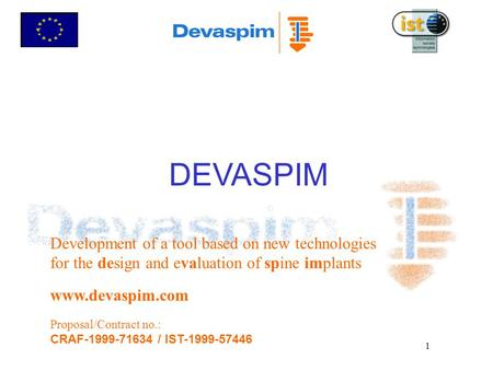 1 DEVASPIM Development of a tool based on new technologies for the design and evaluation of spine implants www.devaspim.com Proposal/Contract no.: CRAF-1999-71634.