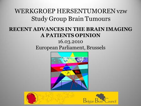 WERKGROEP HERSENTUMOREN vzw Study Group Brain Tumours RECENT ADVANCES IN THE BRAIN IMAGING A PATIENTS OPINION 16.03.2010 European Parliament, Brussels.