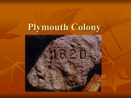 Plymouth Colony. Separatists Protestants in England were unsatisfied with the Anglican Church (Church of England) Protestants in England were unsatisfied.