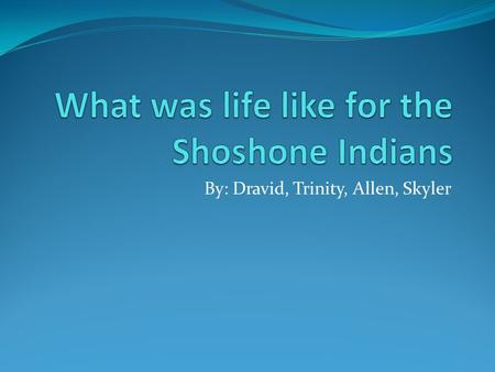 By: Dravid, Trinity, Allen, Skyler. Where did the Shoshone Indians live The Shoshone Indians lived in many places. The Northern Shoshone Indians lived.
