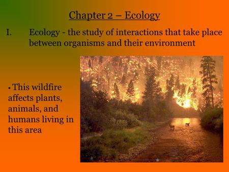an overview of ecology the study of plants animals and the environment Study overview undergraduate  and you will assess the impact plants, animals and microbes have on their ecosystem  ecology and environmental biology,.