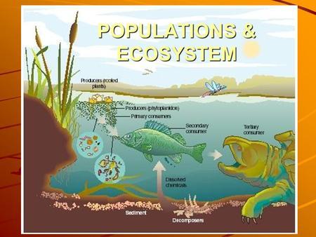POPULATIONS & ECOSYSTEM. BIOSPHERE The thin upper part of earth's surface and its atmosphere is capable of supporting life.