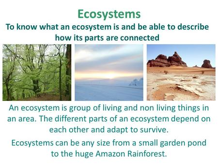 Ecosystems An ecosystem is group of living and non living things in an area. The different parts of an ecosystem depend on each other and adapt to survive.