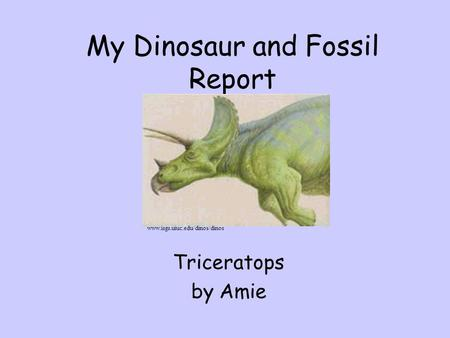My Dinosaur and Fossil Report Triceratops by Amie www.isgs.uiuc.edu/dinos/dinos.