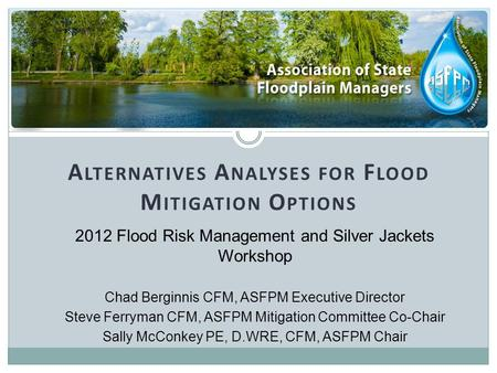 A LTERNATIVES A NALYSES FOR F LOOD M ITIGATION O PTIONS 2012 Flood Risk Management and Silver Jackets Workshop Chad Berginnis CFM, ASFPM Executive Director.