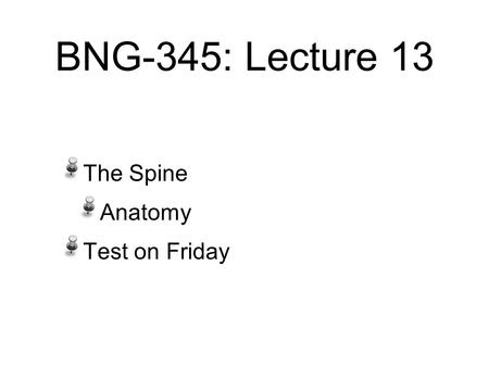 BNG-345: Lecture 13 The Spine Anatomy Test on Friday.