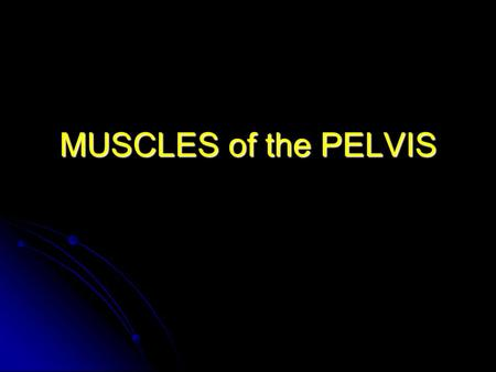 MUSCLES of the PELVIS. Pelvic Walls: Obturator internus Origin: Origin: Most of the internal surface of the anterolateral wall of the pelvis minor (pelvic.