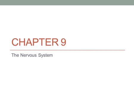 Chapter 9 The Nervous System.