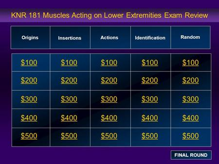 KNR 181 Muscles Acting on Lower Extremities Exam Review $100 $200 $300 $400 $500 $100$100$100 $200 $300 $400 $500 Origins Insertions Actions Identification.