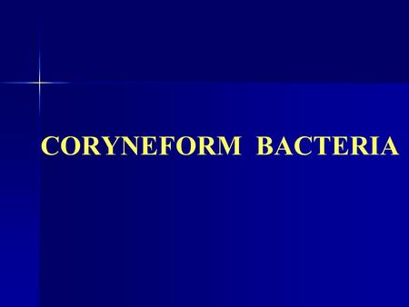CORYNEFORM BACTERIA. Diphteroids  Pleomorphic gram-positive rods.  Club Shaped (Chinese Letter like, V forms)  Catalase +ve  Non sporing  Non acid.
