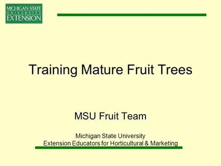 Training Mature Fruit Trees MSU Fruit Team Michigan State University Extension Educators for Horticultural & Marketing.