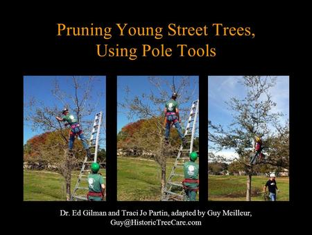 Pruning Young Street Trees, Using Pole Tools Dr. Ed Gilman and Traci Jo Partin, adapted by Guy Meilleur,