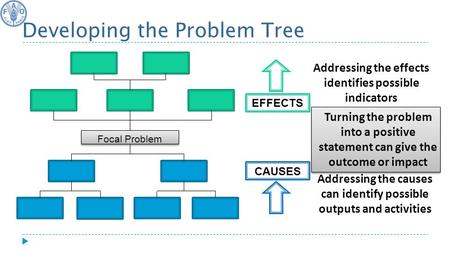 CAUSES EFFECTS Focal Problem Developing the Problem Tree Turning the problem into a positive statement can give the outcome or impact Addressing the causes.