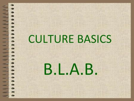 CULTURE BASICS B.L.A.B.. CULTURE A system of beliefs, values and assumptions about life that guide behavior and are shared by a group of people. It includes.